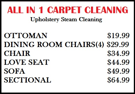 all in 1 carpet cleaning. Black Bedroom Furniture Sets. Home Design Ideas